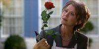 Красота по-американски. Фильм 1999.